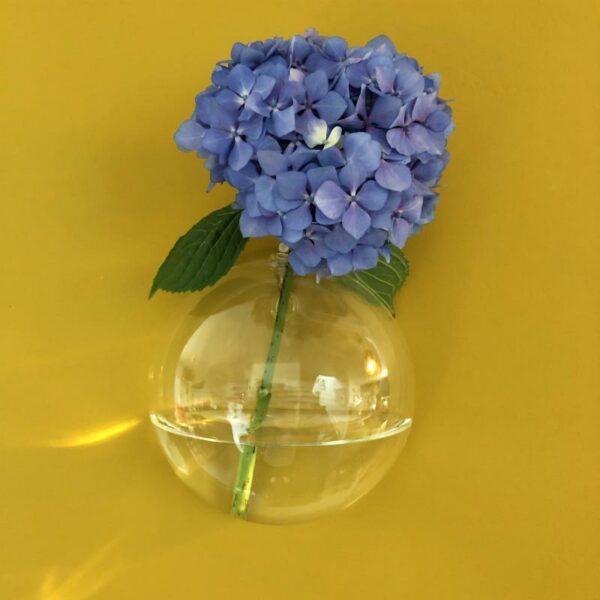 vase boule soliflore mural en verre de style boheme et design